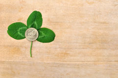 Green clover leaf and coin on wooden board Stock Image