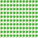 Green clover leaf pattern Royalty Free Stock Photo