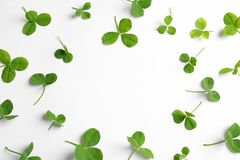 Green clover leaves on white background. Flat lay composition with space for text royalty free stock photo