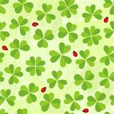 Green clover meadow with little ladybirds pattern  Royalty Free Stock Image