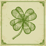 Green clover on old paper. Vector vintage poster with clover for Patrick`s day. Green clover on old paper and vintage frame Royalty Free Stock Images