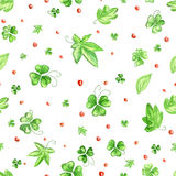 Green clover pattern Stock Photography