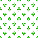 Green Clover Seamless Pattern. Shamrock Background Stock Photography