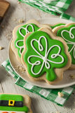 Green Clover St Patricks Day Cookies Stock Images