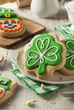 Green Clover St Patricks Day Cookies. Ready to Eat Royalty Free Stock Photo