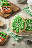 Green Clover St Patricks Day Cookies. Ready to Eat Royalty Free Stock Image