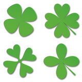 Green cloverleafs Stock Photography