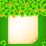 Green clovers background with golden coins Stock Photos