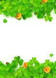 Green clovers with golden coins on white. Green vector clovers with golden coins on white background Royalty Free Stock Photography