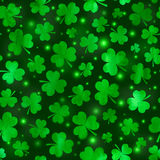 Green clovers vector seamless pattern Royalty Free Stock Photos