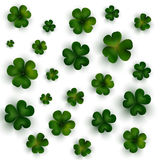 Green clovers on white, decoration for St Patricks day Stock Images