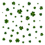 Green clovers on white, decoration for St Patricks day Royalty Free Stock Photos