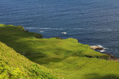 Green coast of Skye Royalty Free Stock Image