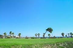 Green coastline Royalty Free Stock Photo