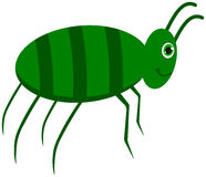 A green cockroach Stock Photography