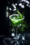 Green cocktail with tarragon and ice in martini glass on dark background with shaker, selective focus. Green cocktail with tarragon and ice in martini glass on stock image