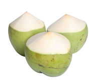 Green Coconut. Isolated on white background Royalty Free Stock Photos