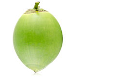 Green coconut Fruit. On white background Royalty Free Stock Image