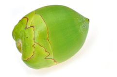 Green coconut Fruit Stock Photography