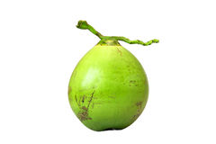 Green coconut fruit isolated on white background,clipping path stock photo