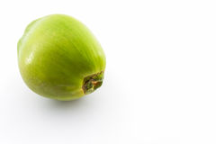 Green Coconut. Green Coconut isolated on white background Royalty Free Stock Image