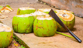 Green coconut Royalty Free Stock Photo