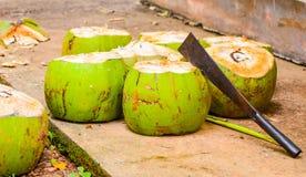 Green coconut Royalty Free Stock Photo