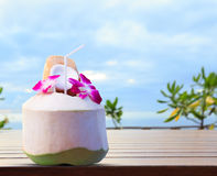 Green coconut and orchid flowers as welcome drink in tropical de Royalty Free Stock Images