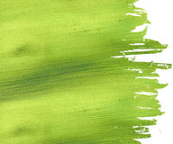 Green coconut paper background Stock Photos