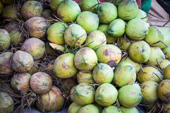 Green coconut pile,fresh coconut water isotonic drink Royalty Free Stock Images