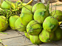 Green coconut Stock Photos