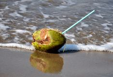 Green coconut with straw at seashore Royalty Free Stock Image