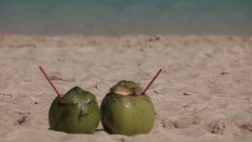 Green coconut on tropical beach. Green coconut on the tropical beach sand in front of the sea stock video