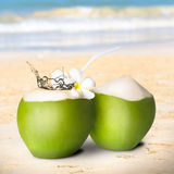 Green coconut with water splash Royalty Free Stock Images