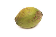 Green coconut. On white background Royalty Free Stock Photos