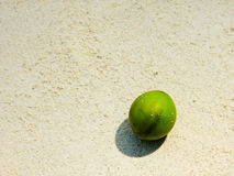 Green coconut on white sand beach Stock Photo