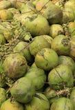 Green coconuts Stock Photo