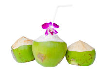 Green coconuts with drinking straw isolated Stock Image