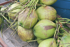 Green coconuts at market Stock Photography