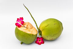 Green coconuts Royalty Free Stock Photography