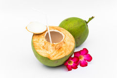Green coconuts Stock Images