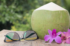 Green coconuts with sunglass and Orchid. Tropical fresh coconut cocktail decorated purple orchid and sunglass Stock Images