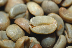 Green coffe bean Royalty Free Stock Image