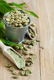 Green coffee background. Green coffee - beans and ground. Selective focus. Copy space background Royalty Free Stock Photos
