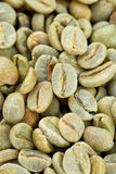 Green coffee background Royalty Free Stock Photos