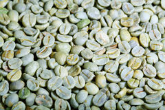 Green coffee beals Stock Image