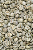 Green coffee bean background Stock Photo