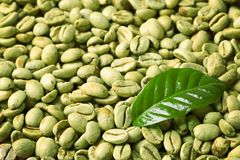 Free Green Coffee Beans And Fresh Leaf As Background Royalty Free Stock Image - 131105516