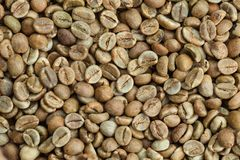 Green coffee beans as background Stock Photos