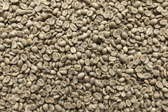 Green coffee beans. Background, background made as coffee beans Royalty Free Stock Images